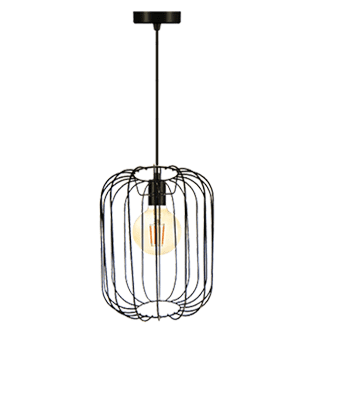 Wire Frame Pendant Light