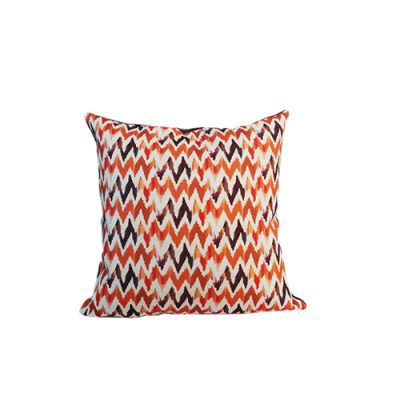 Scatter Cushion Pillow